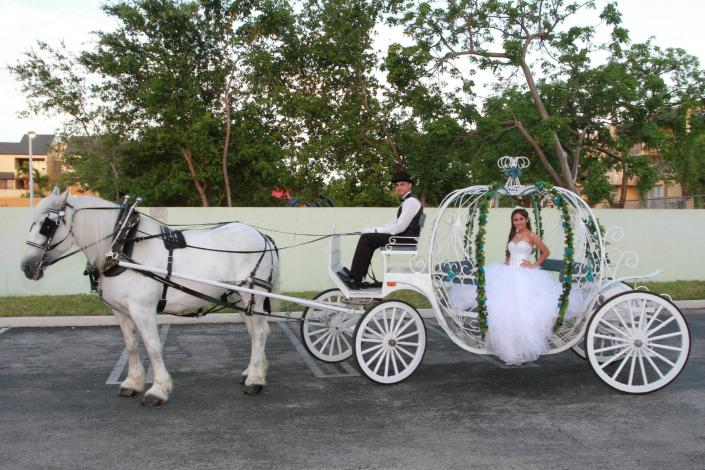 [Image: Taylor arriving in her Cinderella Carriage.]